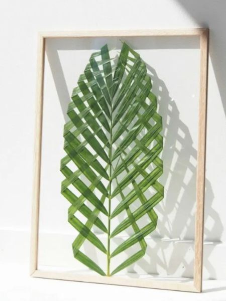 Leaf on a frame