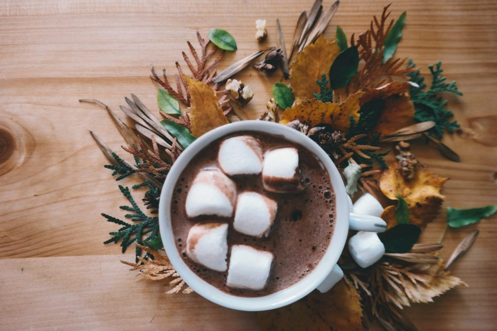 Hot Chocolate in a white mug with marshmallow on top of it