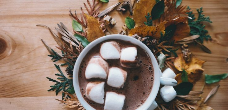 Hot Chocolate in a white mug with marshmello on top of it