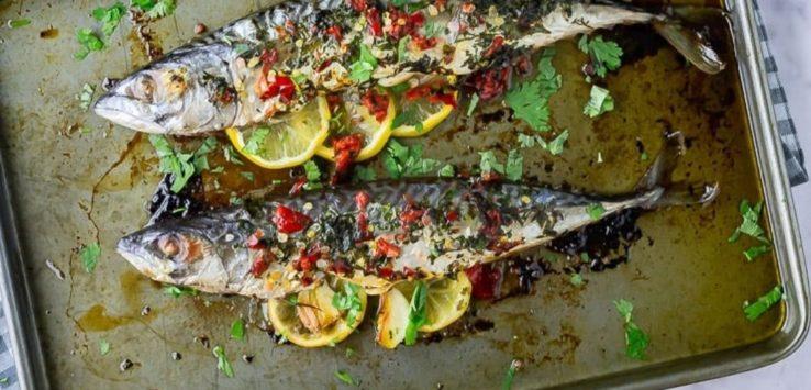 Fish Dinner Recipes