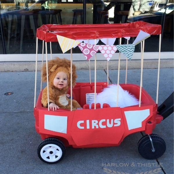 DIY Halloween Baby Circus Lion